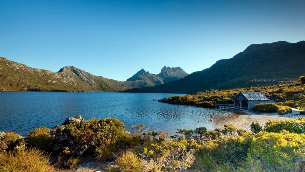 dove lake beneath cradle mountain with iconic boat shed and beach