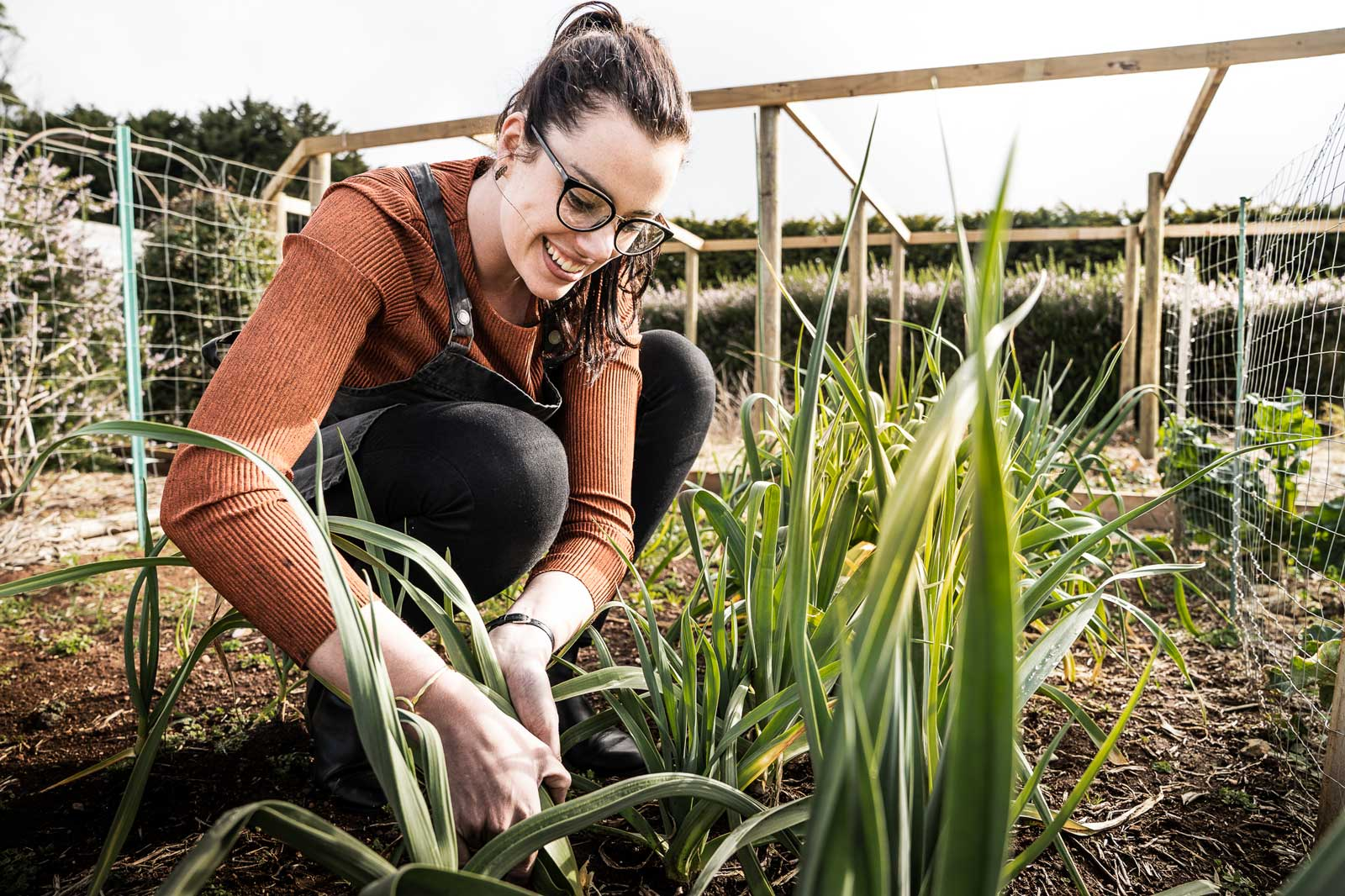 Glencoe Country B&B homegrown vegetables